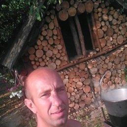 Роман, 37 лет, Владимир-Волынский