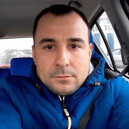 Елисеев, 37 лет, Харьков