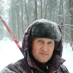 Владимир, 43 года, Реутов