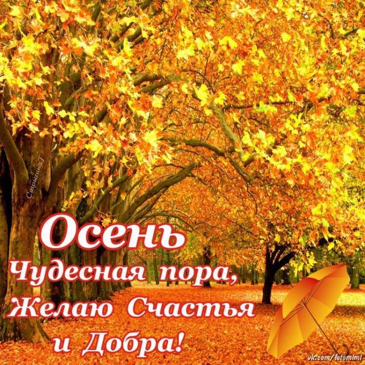 Открытку марта, осень картинки с надписью на каждый день