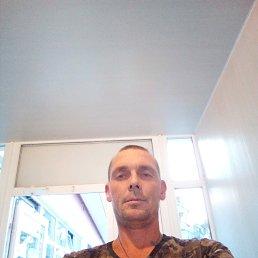 Sergej, 36 лет, Белгород