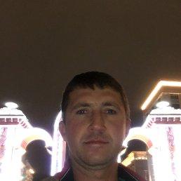 Андрей, 36 лет, Ставропольский