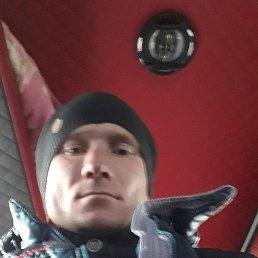 Денис, 32 года, Кобеляки