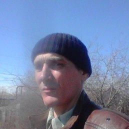 илья, 43 года, Саратов