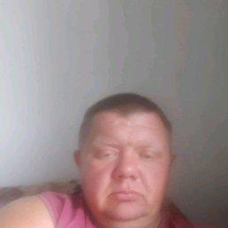 Серж, 37 лет, Камень-на-Оби