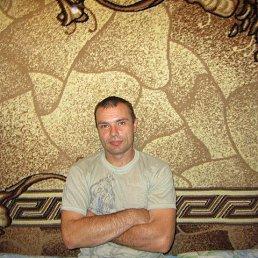 Vadim, 45 лет, Тверь