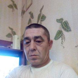 Александр, 43 года, Шимск