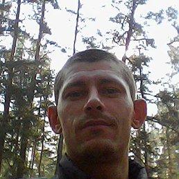 Максим, 28 лет, Доброполье