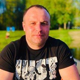 Николай, 36 лет, Саратов