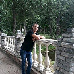 Дмитрий, 33 года, Плавск