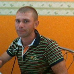 Алексей, 34 года, Новосергиевка