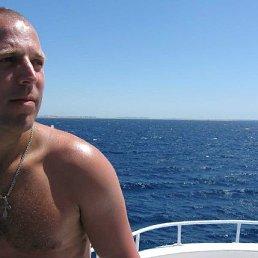 Владимир, 40 лет, Колывань