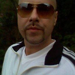 Вадим, 39 лет, Железный Порт