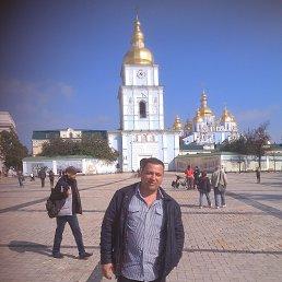 Роман, 40 лет, Новомосковск