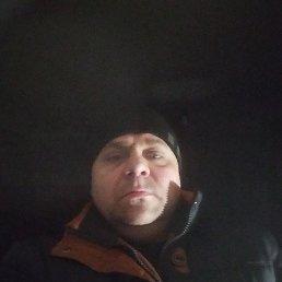 сергей, 42 года, Брянка