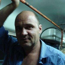 Юра Коврижко, 51 год, Бровары