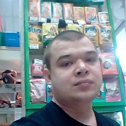 Павел, 32 года, Трехгорный