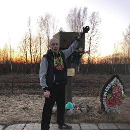 Андрей, 44 года, Демянск