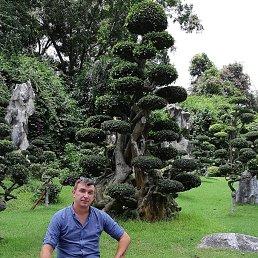 Александр, 40 лет, Курахово