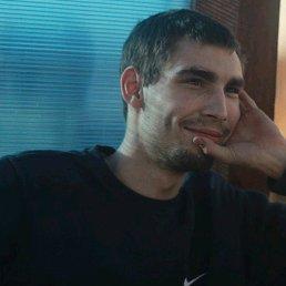 Антон, 28 лет, Белоусово