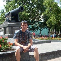 Александр, 30 лет, Киев