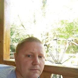 Николай, 44 года, Болхов