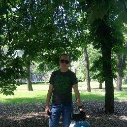 Анатолий, 35 лет, Торез