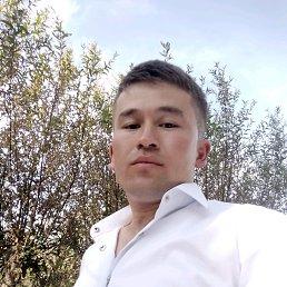 Дима, 28 лет, Сходня