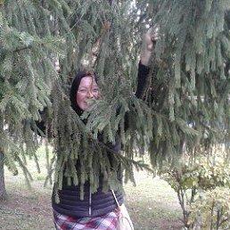 Елена, 36 лет, Набережные Челны