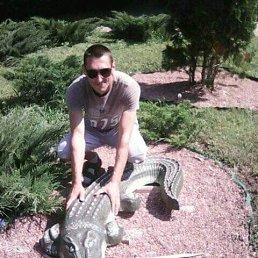 Сергей, 32 года, Хорол