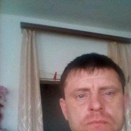 Евгений, 42 года, Васильевка