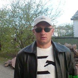 Иван, 44 года, Вишневое