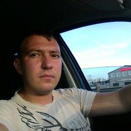 Федор, 29 лет, Воронеж