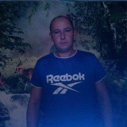 Алексей, 36 лет, Белополье