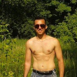 юрий, 29 лет, Сумы