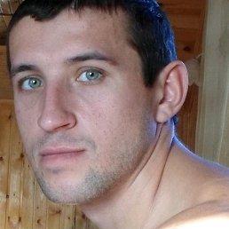 Николай, 34 года, Зверево