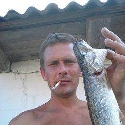Вадим, 29 лет, Костополь