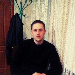 Стас, 34 года, Лохвица