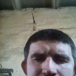 Владимир, 36 лет, Маркс