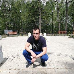михаил, 37 лет, Гаврилов-Ям