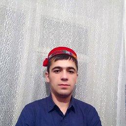 Руслан, 24 года, Загорянский