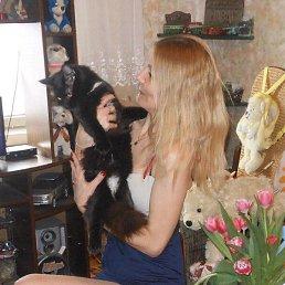 Лена, 38 лет, Пушкино