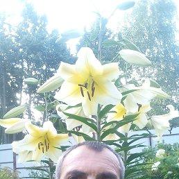 Рустам, 51 год, Солнечногорск