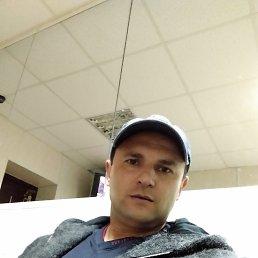 Юрий, 41 год, Молодогвардейск