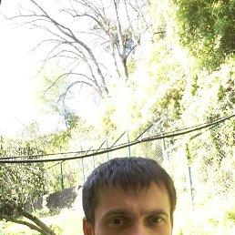 Игорь, 33 года, Сочи