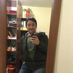Никита, 27 лет, Барнаул