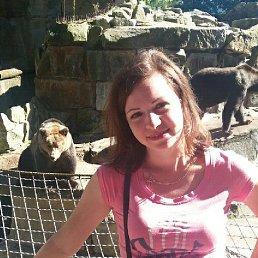 Светлана, 37 лет, Калининград