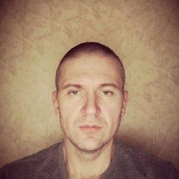 Денис, 37 лет, Талдом