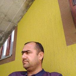 Саид, 38 лет, Пушкин