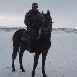 Степан, 38 лет, Яшалта